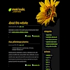 MOABAIRLINES.COM