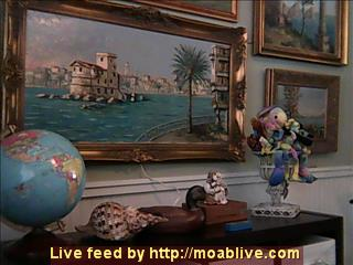 MOABLIVE.COM WEBCAM